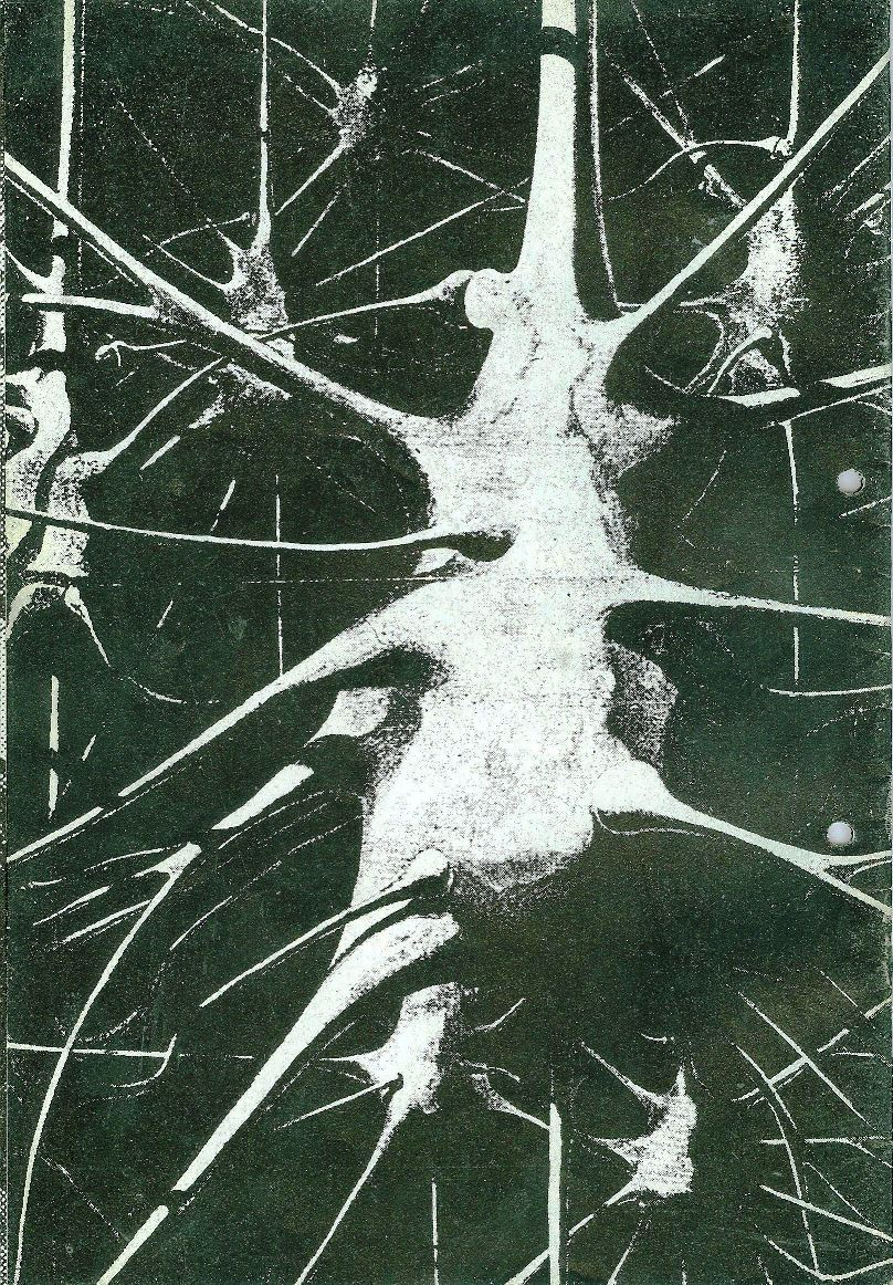 Freiraum196