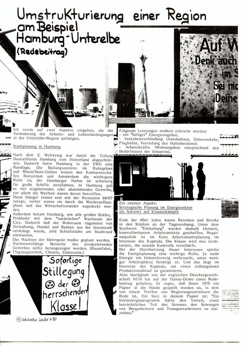 Hamburg_Schwarze_Katze156