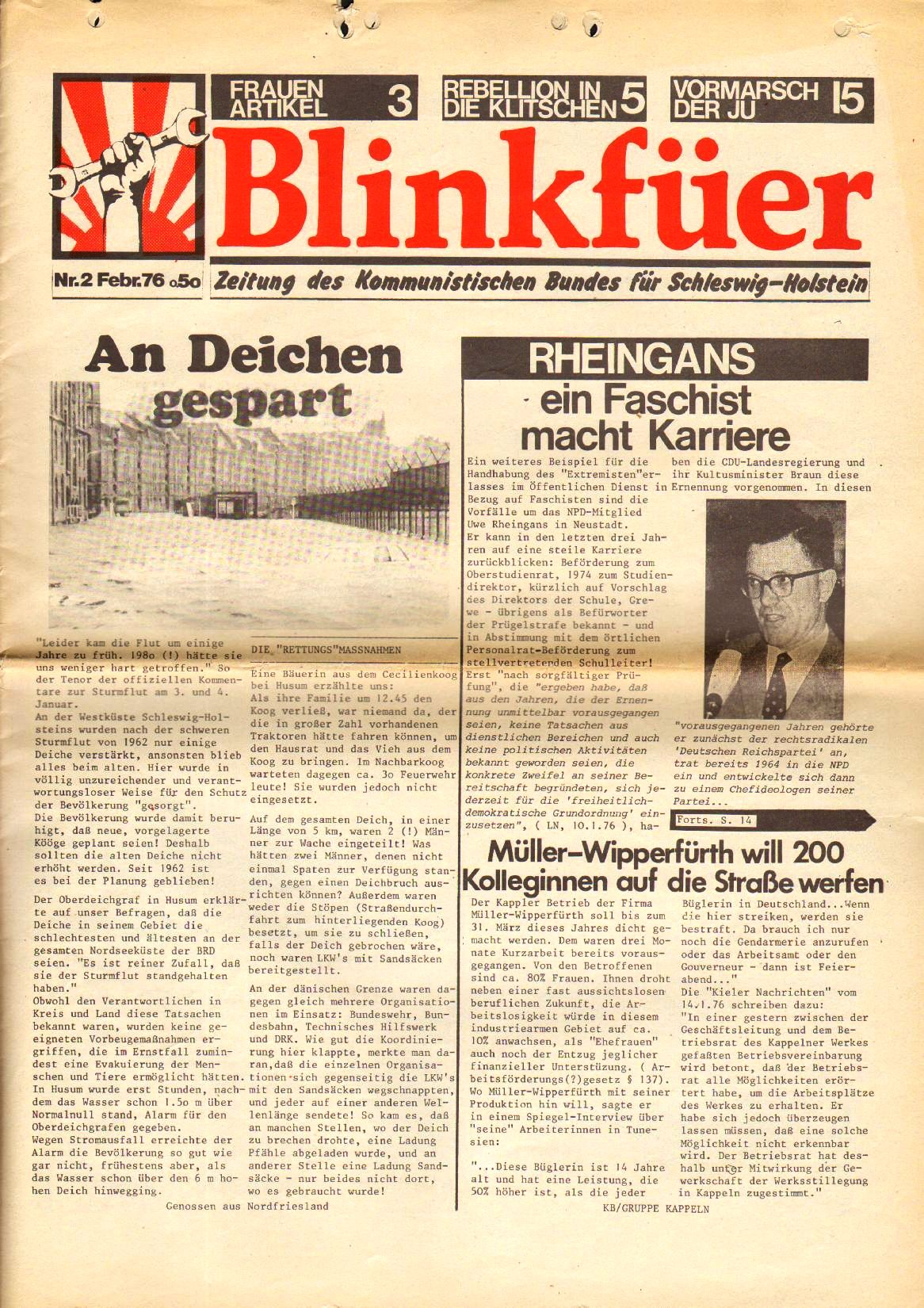 Blinkfuer061