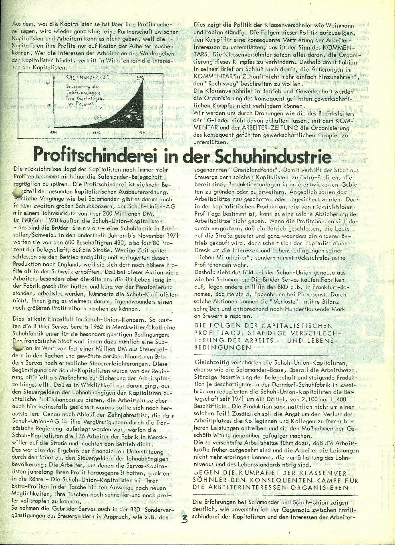 Speyer_Salamander006