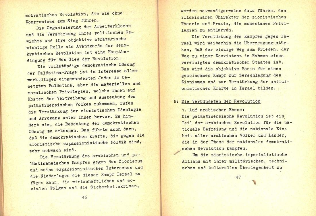 FDLP_1975_Politisches_Programm_25