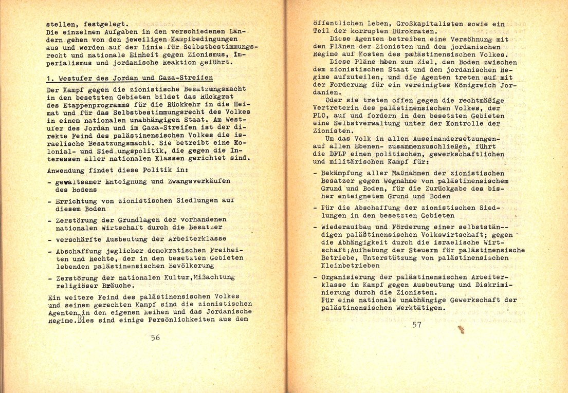 FDLP_1975_Politisches_Programm_30