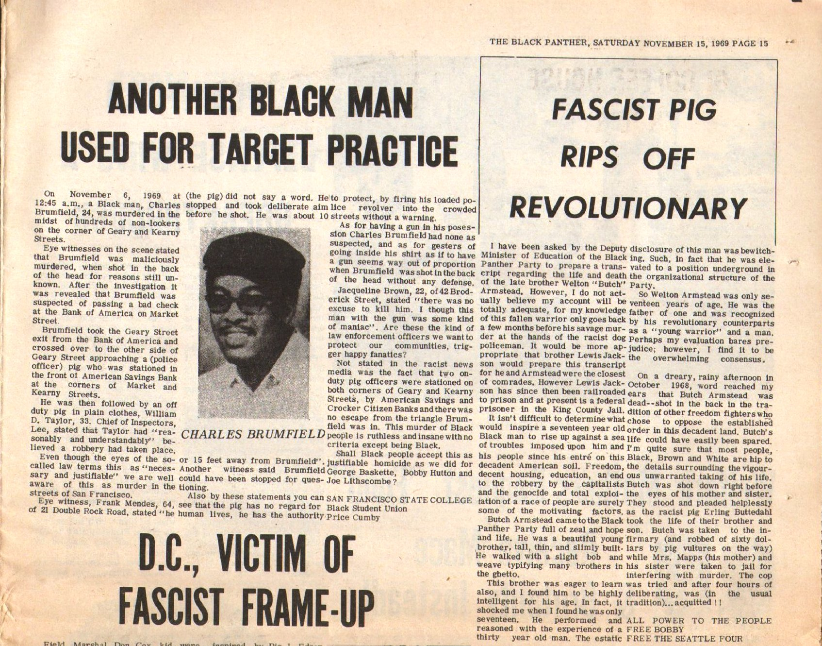 Black_Panther133