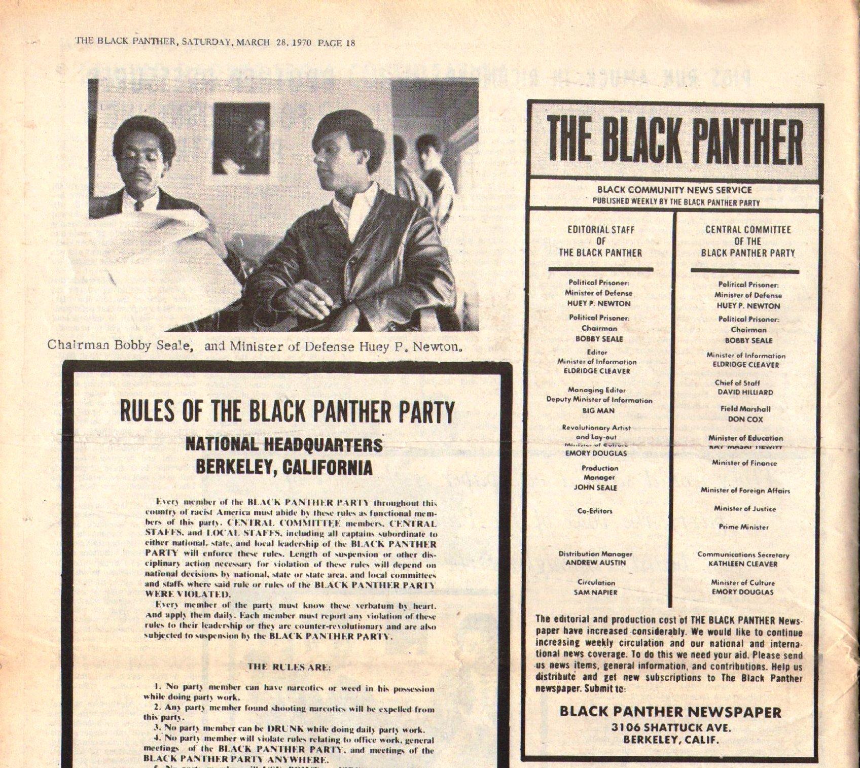 Black_Panther294