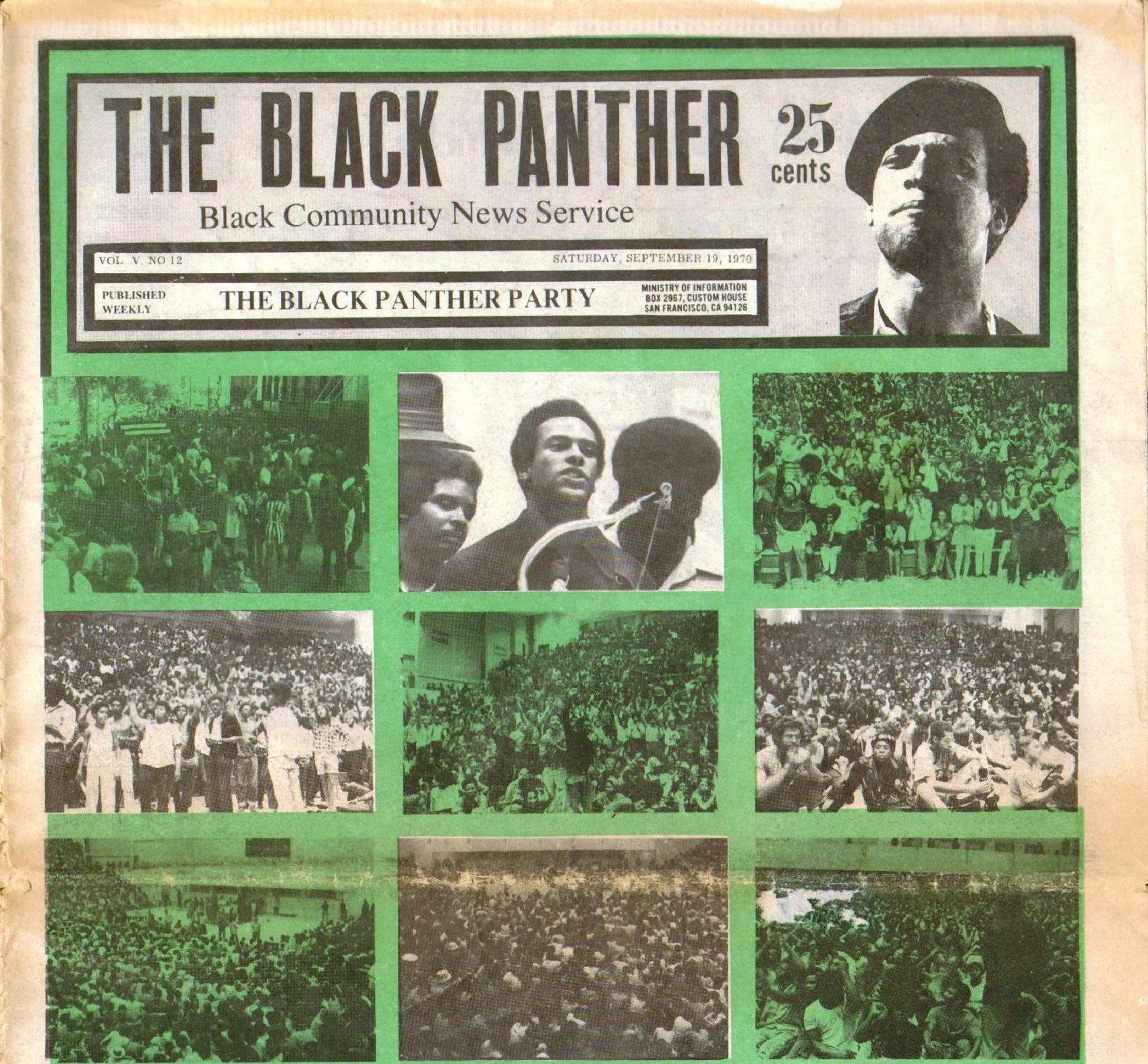 Black_Panther371