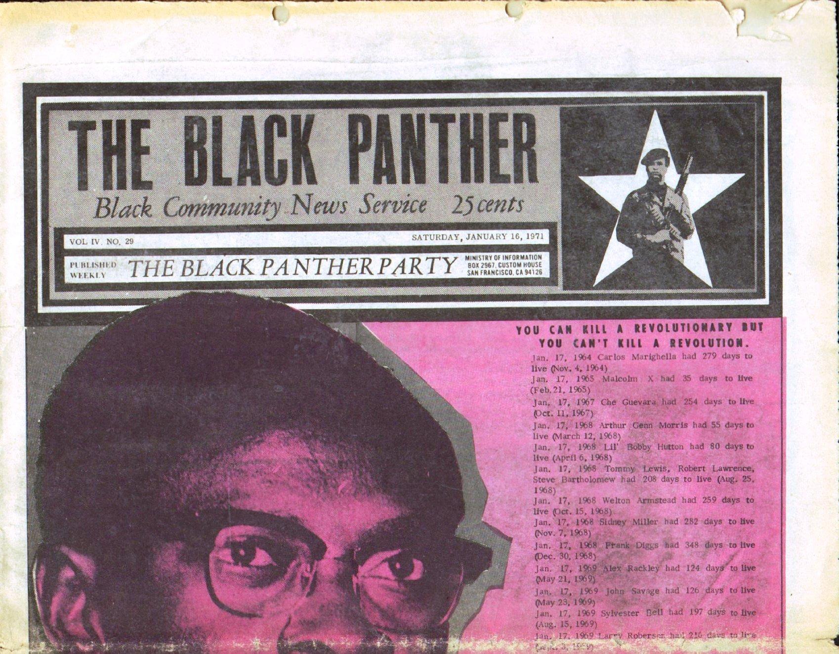 Black_Panther491